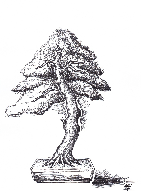 bunjin pine